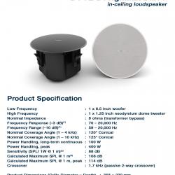 BOSE DesignMax DM6C