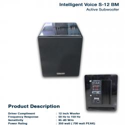 Intelligent Voice S-12 BM
