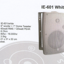 Wall Speaker Intelligent Electronic 601