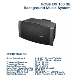Bose FreeSpace DS 100 SE