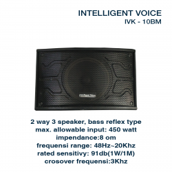 Intelligent Voice K-10BM
