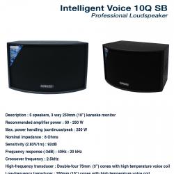 Intelligent Voice 10Q SB