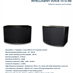 Intelligent Voice 10Q SB
