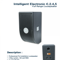 Intelligtent Electronic €-2.4,5