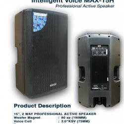 Intelligent Voice Max 15H