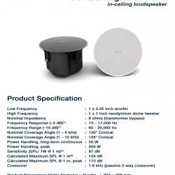 BOSE DesignMax DM5C