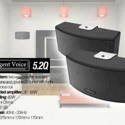 Intelligent Voice 5.2Q