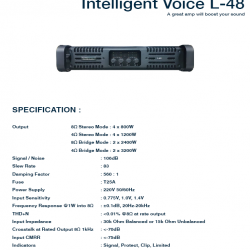 Intelligent Voice L-48