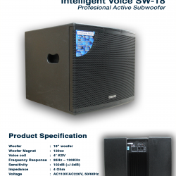 Intelligent Voice SW-18