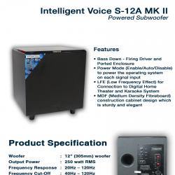 Intelligent Voice S-12A MK II