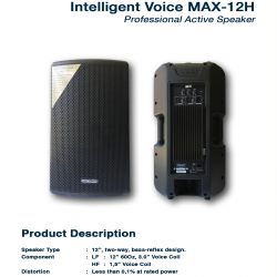 Intelligent Voice Max 12H