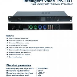 Intelligent Voice PK-1BT